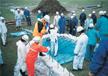 水防工法の設置体験