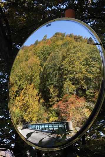 ふと見上げたカーブミラーの中にも紅葉が写っていました。晴天だったので、最高の紅葉を見ることができました。