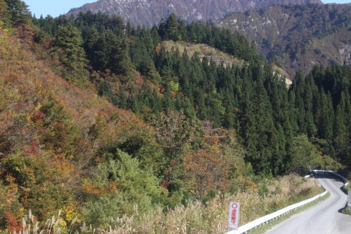 山奥へ工事に入るための道路と紅葉を撮りました。工事が終わったらこの道路は、どうなるのかと思いました。
