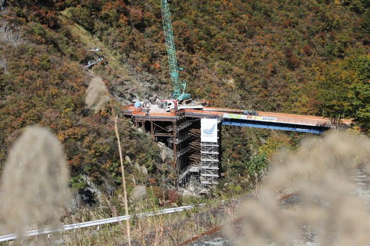 背の高いススキの間に、橋が出来始めていて、渓谷の中に橋があるという不思議な光景でした。