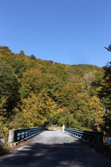 真っ直ぐのびる橋から山に続き、山から雲一つ無い青空に続くように見えて、「おお〜!」と感動しました。