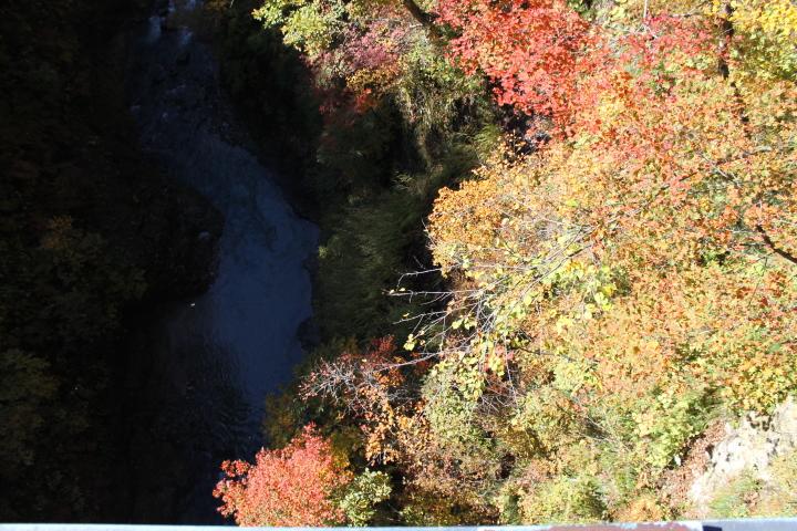 紅葉と川との景色がきれいだったので撮りました。山奥の紅葉はとてもきれいで感動しました。