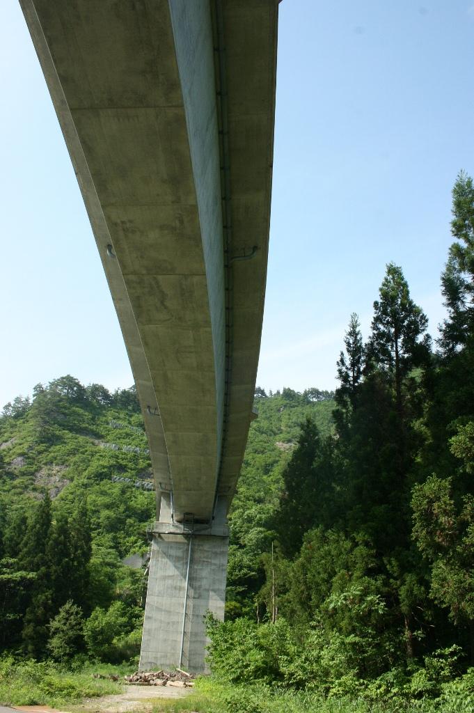 橋の真下から少し上を向いて撮りました。橋の迫力とそれを囲うようにある自然を撮ってみました。