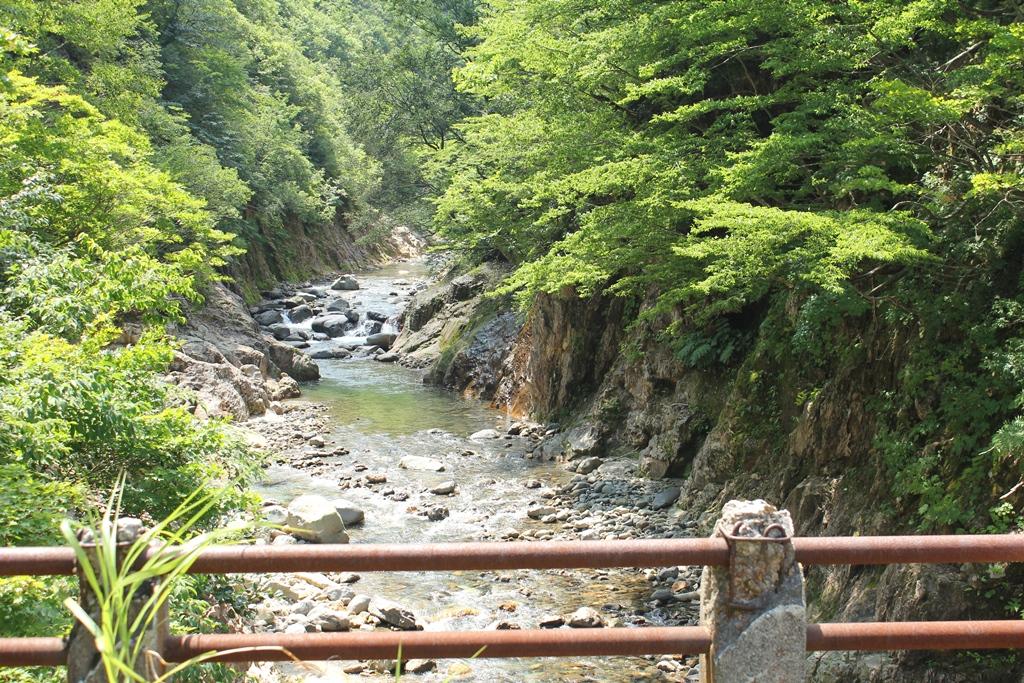 自然のままの渓流の風景は見ていると落ち着きます。反面、自然の厳しさも感じました。