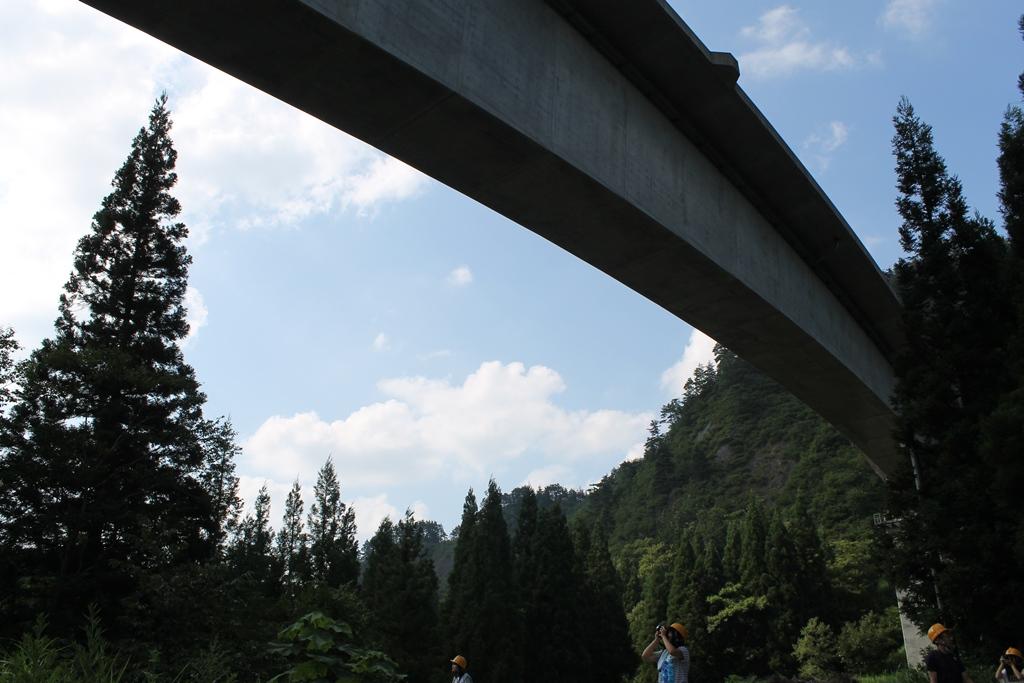 下から見上げる風景も、開通したら見ることができなくなるのでしょうか?下から見る風景も迫力がある風景です。