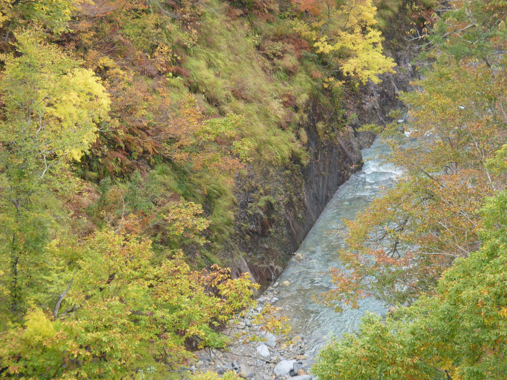 橋の上から見えた、きれいな川ときれいな紅葉を撮影しました。 この時しか見られない秋の色でした。