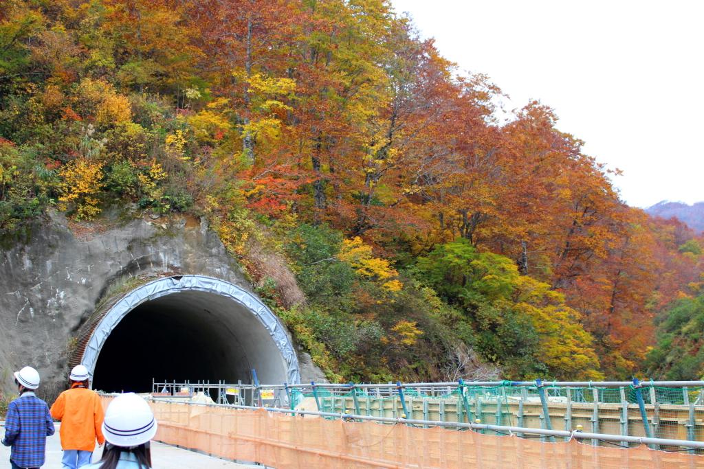 色とりどりの葉をつけた美しい山と、真っ暗なトンネルの深い黒という対照的な風景を撮影しました。